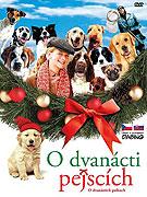 12 vianočných psov