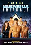 1313: Bermuda Triangle