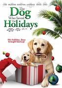 Pes, ktorý zachránil Vianoce 2