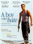 Boy Called Hate, A