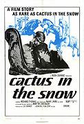 Cactus in the Snow
