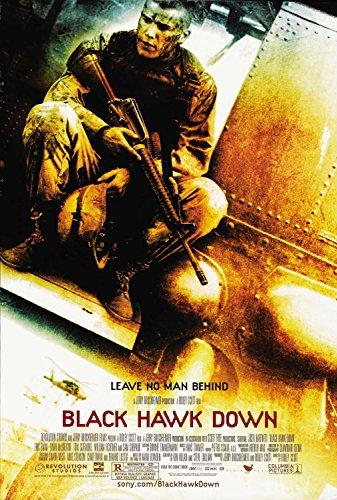 Čierny jastrab zostrelený