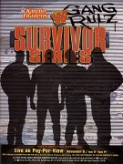 WWE Survivor Series (TV pořad)