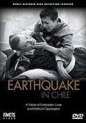 Erdbeben in Chili