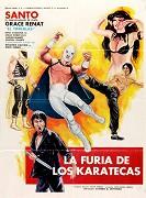 Furia de los karatekas, La