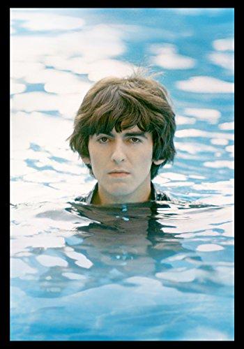 George Harrison: Život v materiálnom svete