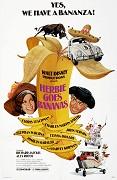 Herbie a poklad Inkov
