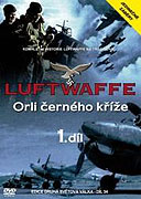 History of the Luftwaffe, The