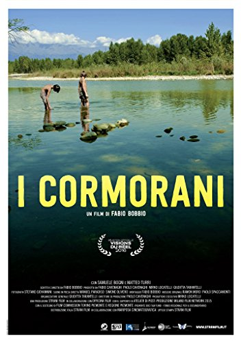 I cormorani