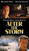 Keď sa búrka skončí