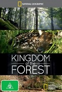 Kingdom of the Forest