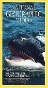 Kosatky dravé : Vlci moře
