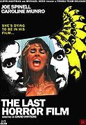 Last Horror Film, The