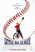 Malá veľká liga