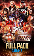 NJPW Wrestle Kingdom 14 (TV pořad)