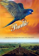 Papagáj Paulie