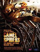 Pavúky útočia