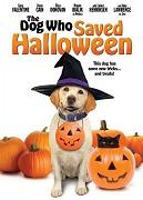 Pes, ktorý zachránil Halloween