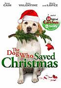 Pes, ktorý zachránil Vianoce