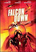Projekt Falcon