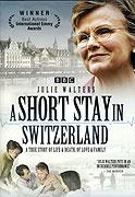 Short Stay in Switzerland, A