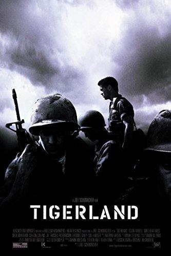 Tábor tigrov