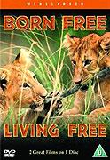 Volanie divočiny: Život na slobode