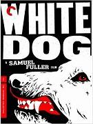 Bílý pes