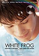 Bílá žába
