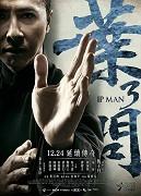 Ye Wen 3