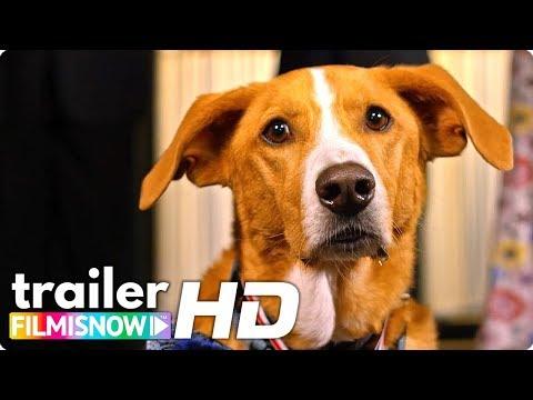 AGENT TOBY BARKS Trailer