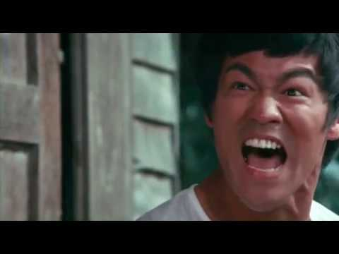 Bruce Lee In Pursuit of the Dragon