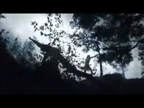 Cesta bojovníka (2007) - trailer
