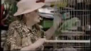 Kameňák 2 - Trailer
