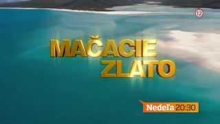 Mačacie zlato - v nedeľu 14. 6. 2015 o 20:30 na TV Markíza