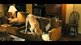 Marley a já (2008) - trailer