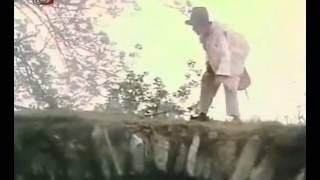 Počítání oveček (1981) - ukázka