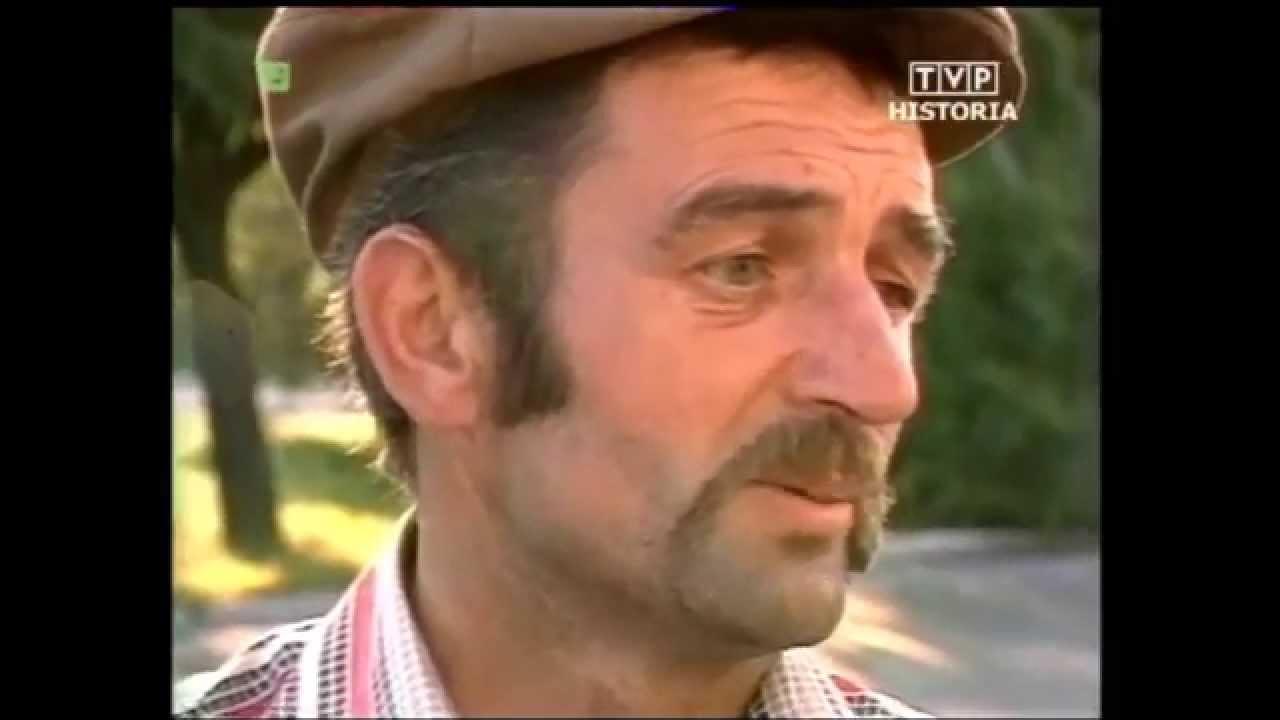 PRL 1984 Żniwa zamknięte sklepy. Zboże wyrzucone do lasu