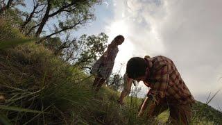 Safari (Trailer)