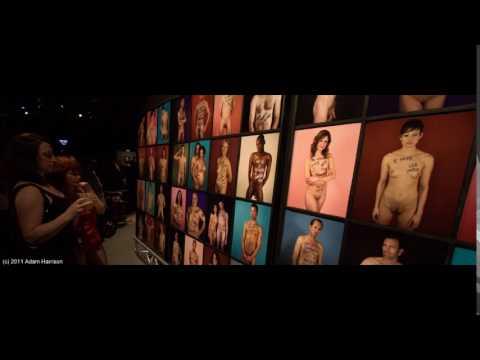 The New Erotic: Art Sex Revolution (2011) wilifilms