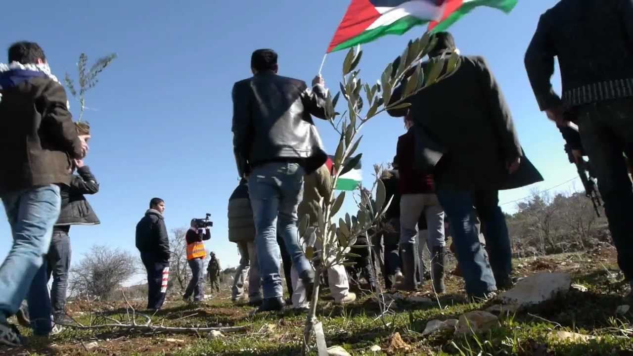 The People and The Olive: The Story of the Run Across Palestine - Official Trailer