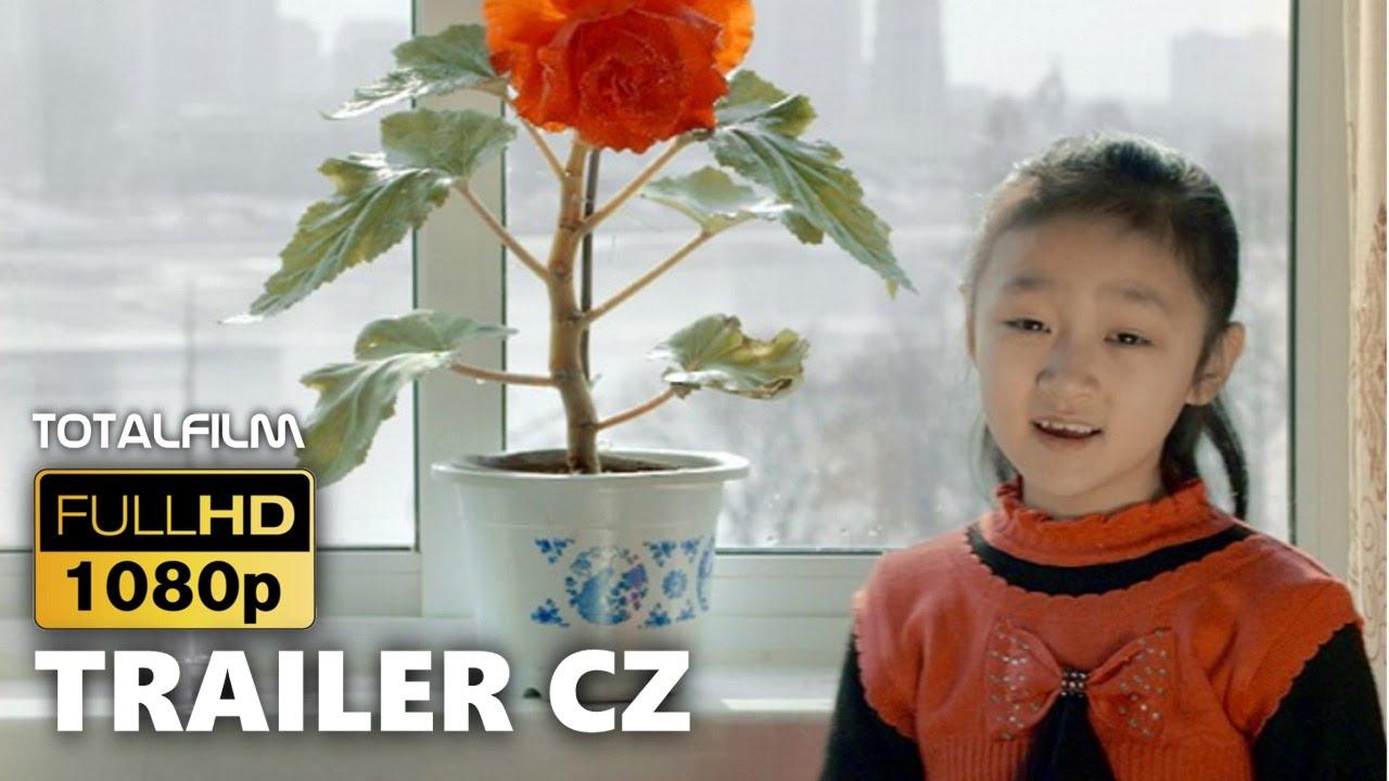 V paprscích slunce (2015) CZ HD trailer